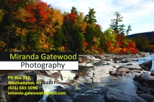 Miranda_Gatewood_Post Card