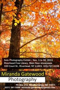 Riverhead Library Nov 2011 Show Card