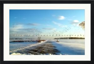 Windshield, Hulse Landing Road Framed Proof