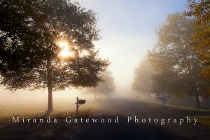 © Miranda Gatewood--5