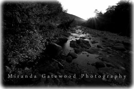 © Miranda Gatewood-0691